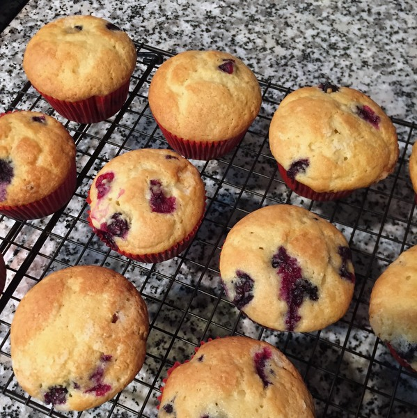 Blueberry Coffee Cake Muffins have a light, cake-like texture with bursts of sweetness from the fresh blueberries.