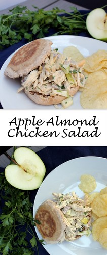 Chicken tossed with sweet apple, tangy homemade mayo and topped with slivered almonds for a nice crunch, this Apple Almond Chicken Salad will get anyone out of a lunch rut!